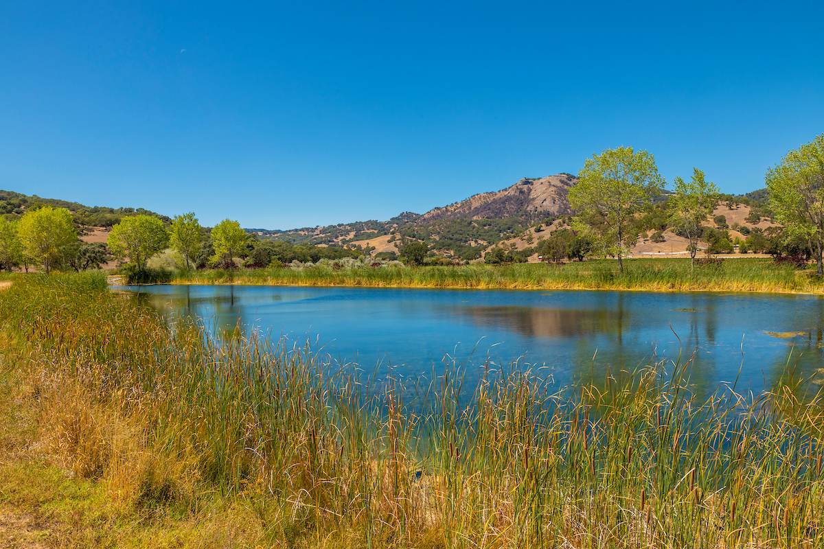 There is a 18-acre reservoir exclusive to Rancho Feliz, ringed by trails and ATV roads for exploring and adventuring.