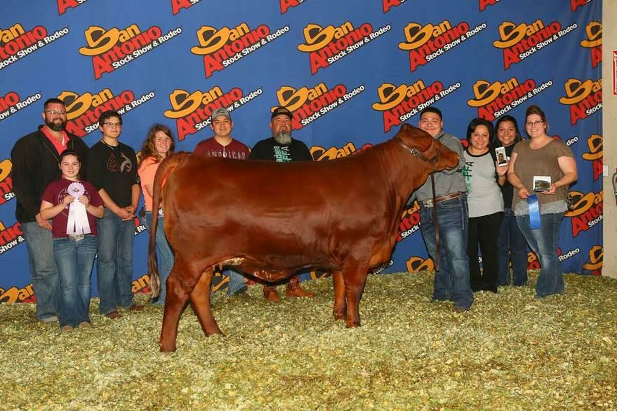 Pasadena High School Ag student Daniel Esquivel and his family attend a 2019 livestock competition in San Antonio. This year, he had four animals in several categories at this year's Pasadena Livestock Show and Rodeo and earned $4,750 in student scholarships.