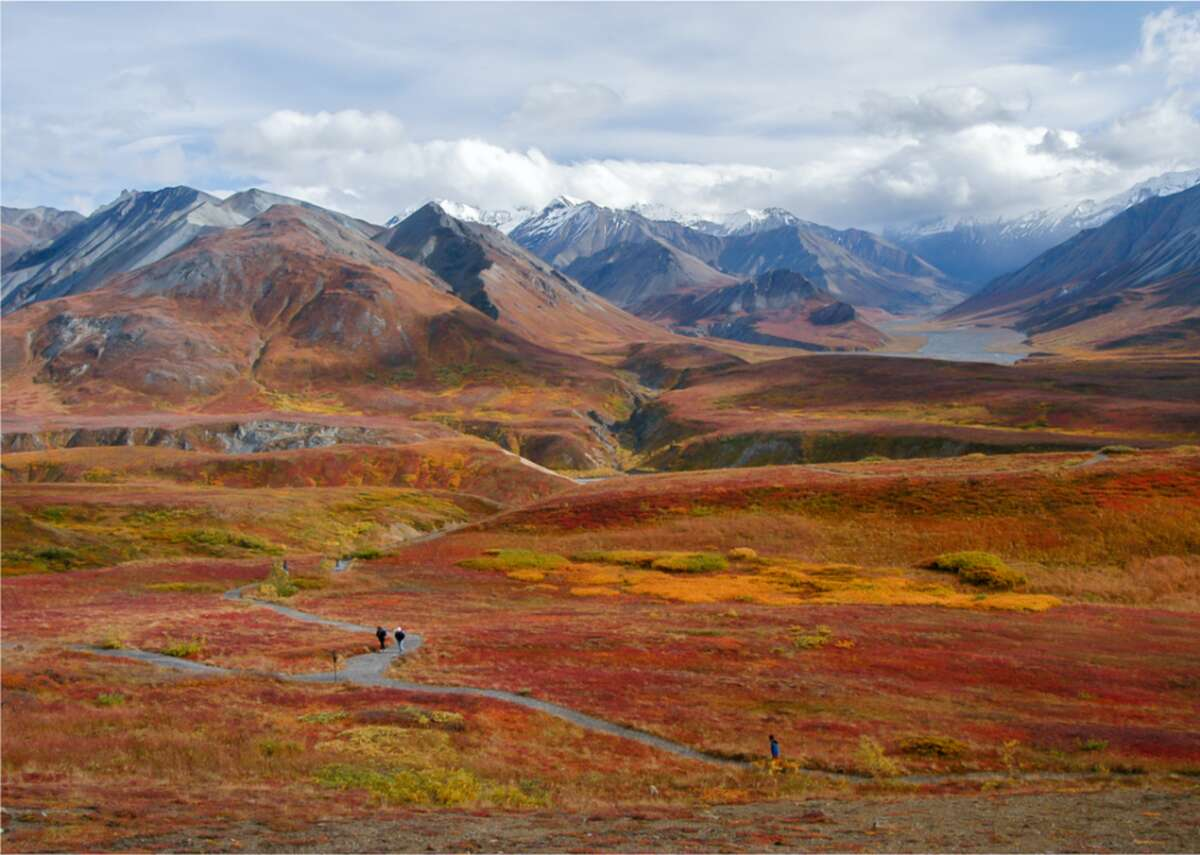 Denali National Park, Alaska Fall color and snow-capped peaks at Alaska's Denali National Park.