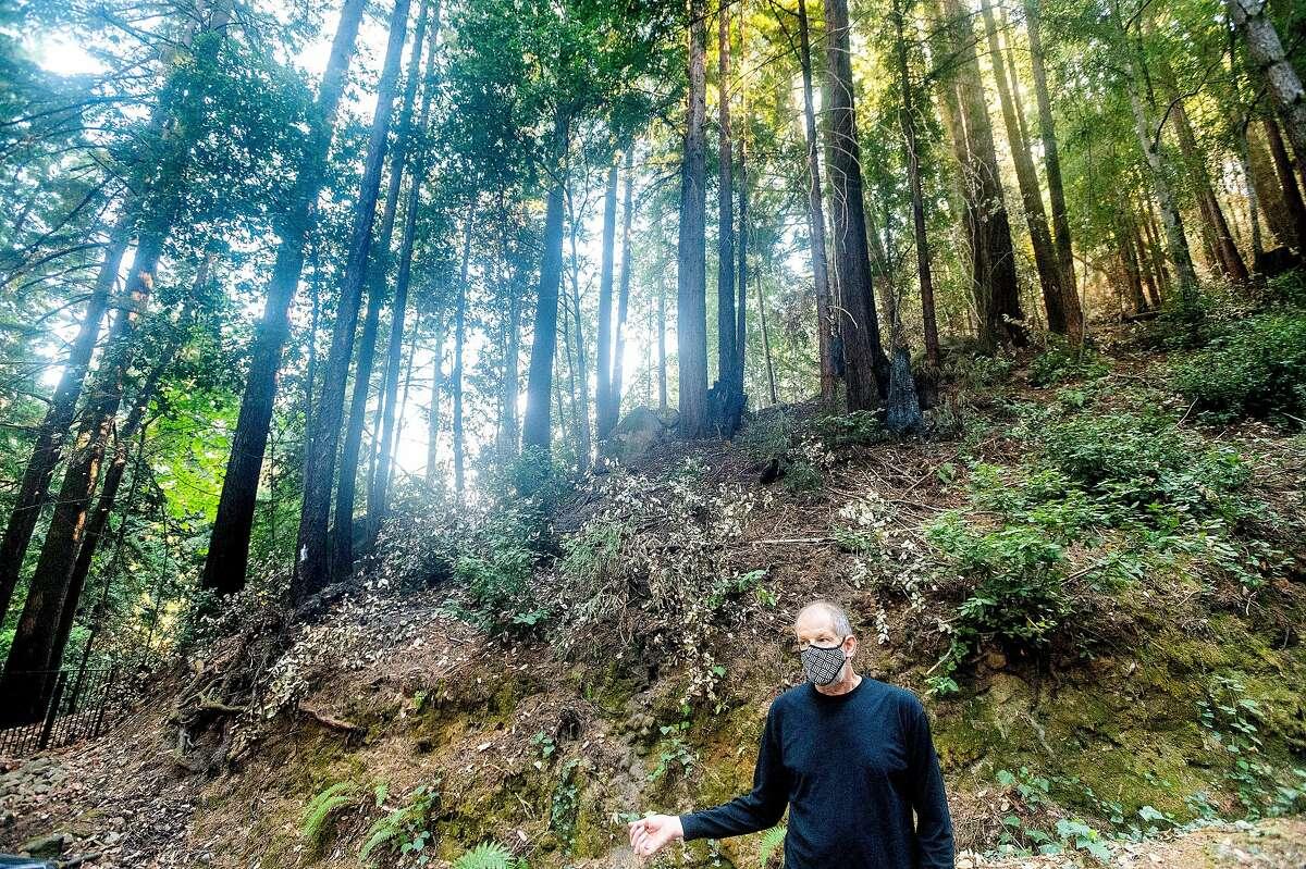 Patrick Aurelio stands beneath a hillside at his home in Boulder Creek (Santa Cruz County).