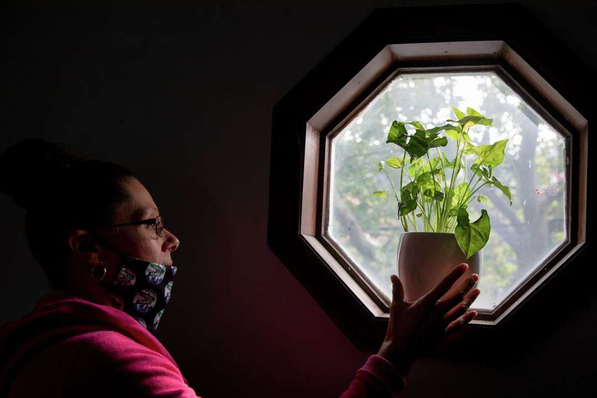 Tara Buchholz cares for her plant on Monday, Sept. 14 at her house in New Haven. Unwinding at her house where she feels comfortable has helped her stay clean.