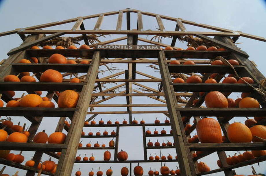 A cabin built of pumpkins greets visitors to the Boonies Farm Fall Days in Worden.