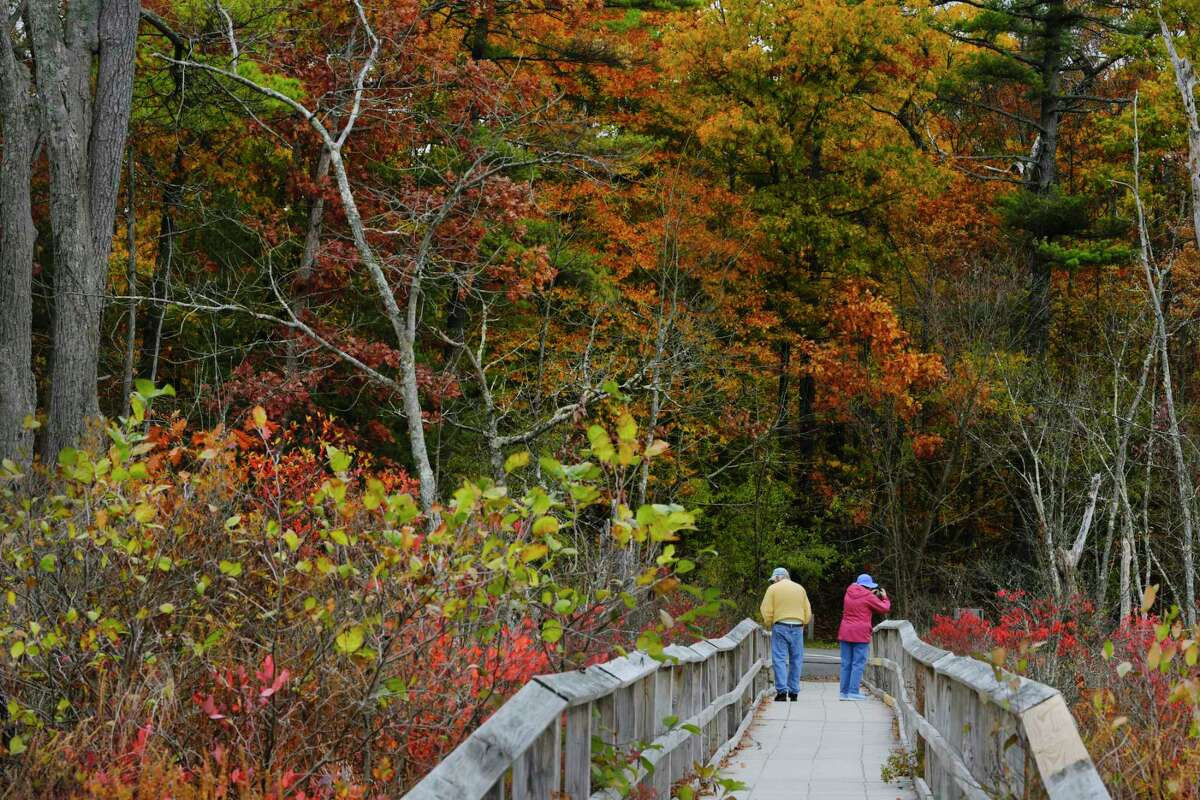 Two people view the fall colors while walking on a pathway leading out to Ballston Lake on Monday, Oct. 19, 2020, in Ballston Lake, N.Y. (Paul Buckowski/Times Union)
