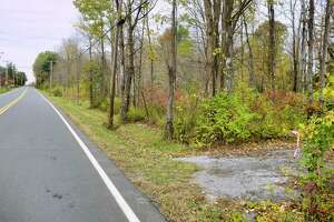 A view of an area just off of Hubbs Road, where a access road into the woods would be created for a proposed solar farm, seen here on Monday, Oct. 19, 2020, in Ballston Lake, N.Y. Neighbors in the area say that an access road off of Hubbs Road would cause a lot of construction traffic and create unsafe conditions. Neighbors also say that once the leaves fall off the trees that the panels of the solar farm would be easily seen from their property, ruining their view and lowering their home values.  (Paul Buckowski/Times Union)