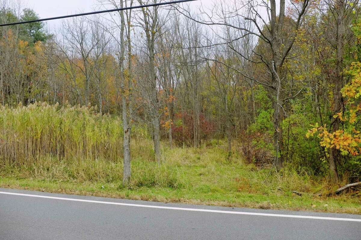 A view through the woods just off of Hubbs Road, in an area where a solar farm is being proposed, seen here on Monday, Oct. 19, 2020, in Ballston Lake, N.Y. Neighbors in the area say that an access road that would be created off of Hubbs Road would cause a lot of construction traffic and create unsafe conditions. Neighbors also say that once the leaves fall off the trees that the panels of the solar farm would be easily seen from their property, ruining their view and lowering their home values. (Paul Buckowski/Times Union)