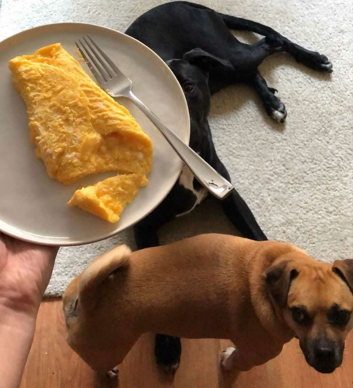 My imperfect (but delicious) French omelette.