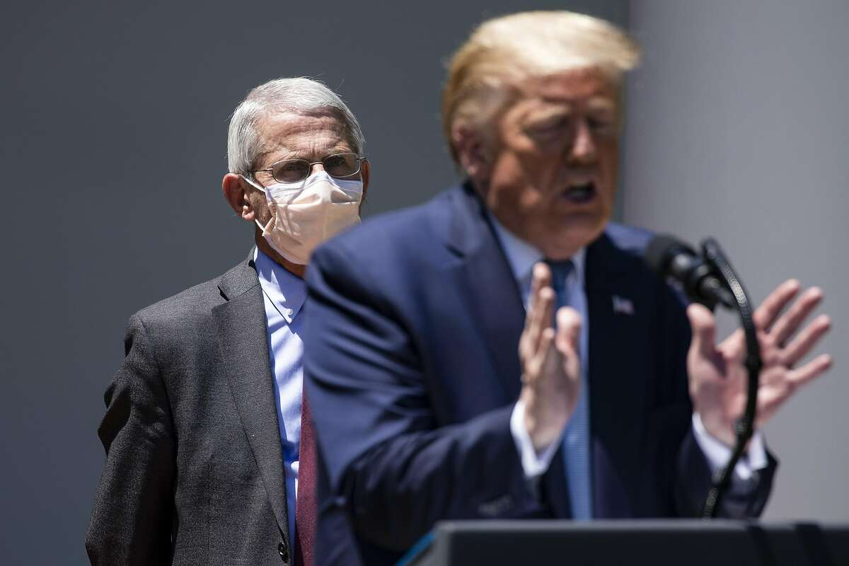 Dr. Anthony Fauci and President Trump in May.