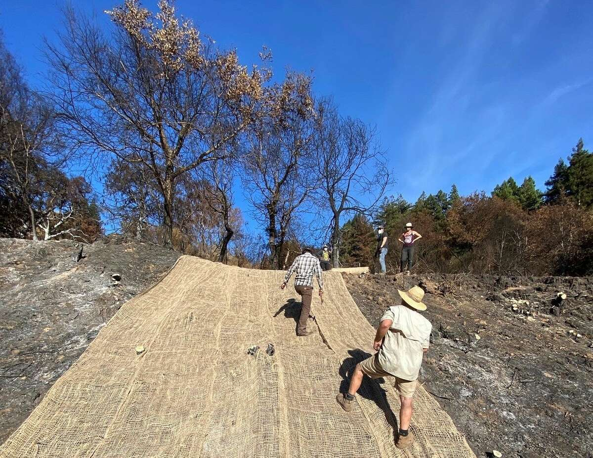 Friends and neighbors help Jon Payne secure a hillside on his property with jute netting.