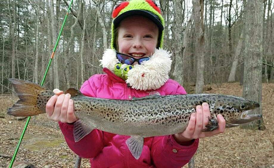 After up to 2 inches of rain last Friday, more than 100 Atlantic salmon have been stocked in part of the Naugatuck River. The salmon were stocked in Harwinton and Litchfield downstream to the Thomaston Dam and from Prospect Street in Naugatuck downstream to Pines Bridge Road in Beacon Falls. Photo: DEEP Photo