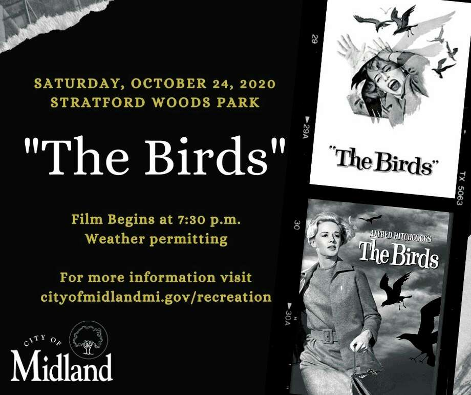 Saturday, Oct. 24: Midland Parks and Recreation Department is hosting a free drive-in style screening of Alfred Hitchcock's thriller The Birds at Stratford Woods Park in Midland. (Photo provided/City of Midland)