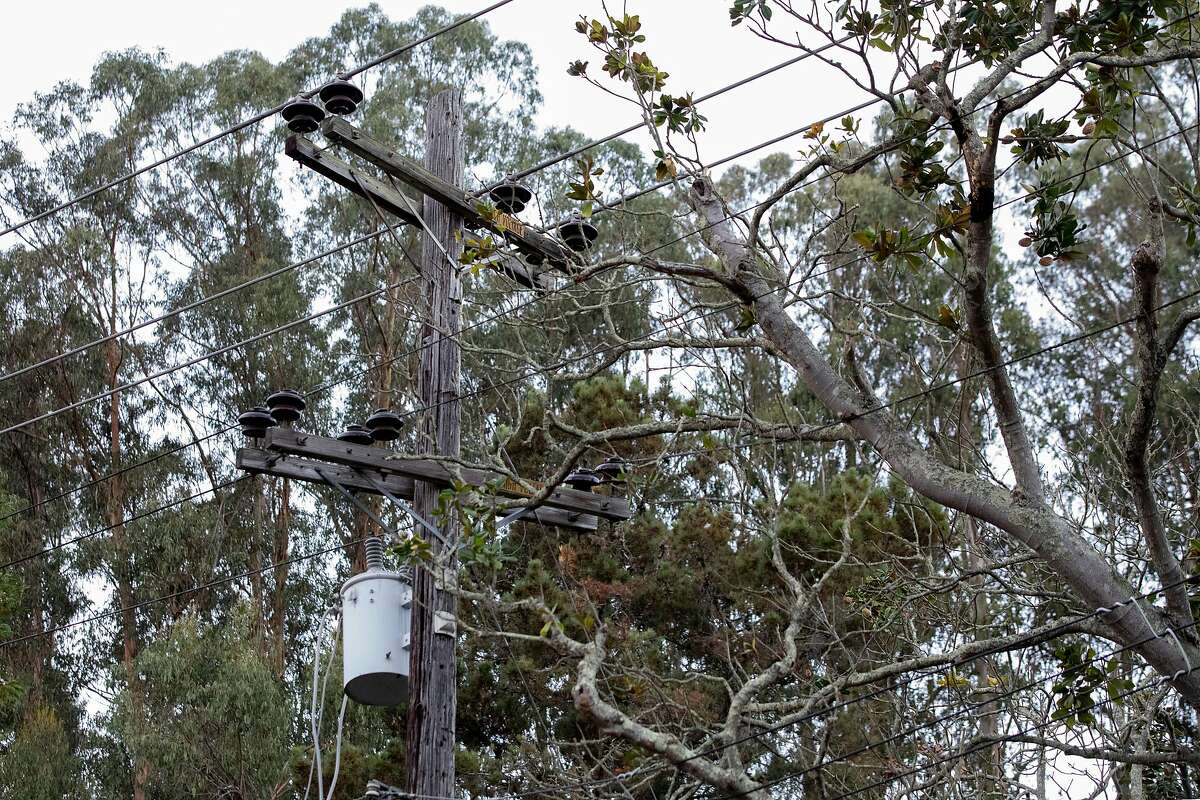 A tree is seen tangled in power lines after it broke during a high wind event in Oakland.A PG&E monitor suggests the companies tree trimming program emphasized numbers over meaningful wildfire risk reduction.