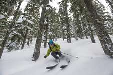Back country skier in the trees near Stevens Pass, Washington