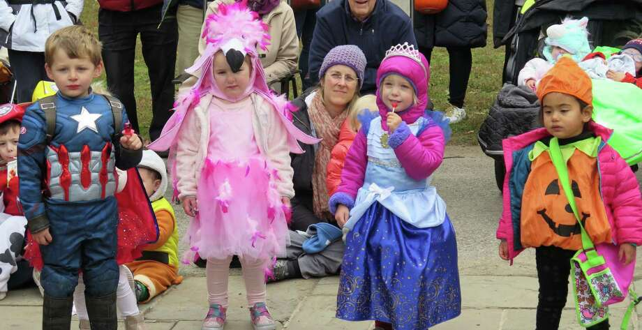 The Darien Community Association will host a Halloween Nauture Stroll Friday, Oct. 30, from 9 a.m.-noon, at the DCA Bird Sanctuary and Nature Trail, 274 Middlesex Rd. Photo: Darien Arts Association