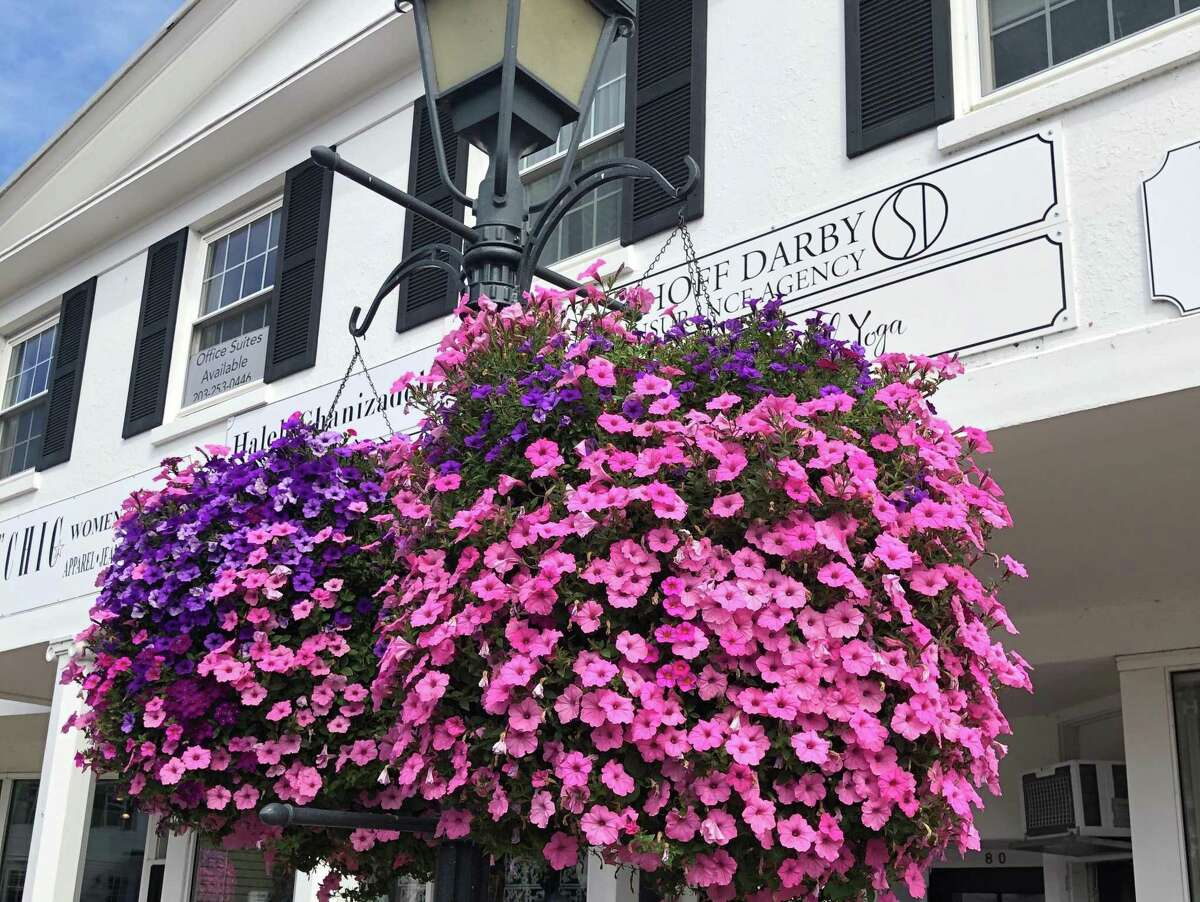 """The """"Making Wilton Beautiful"""" campaign is raising money to purchase flower baskets for Wilton Center next summer."""