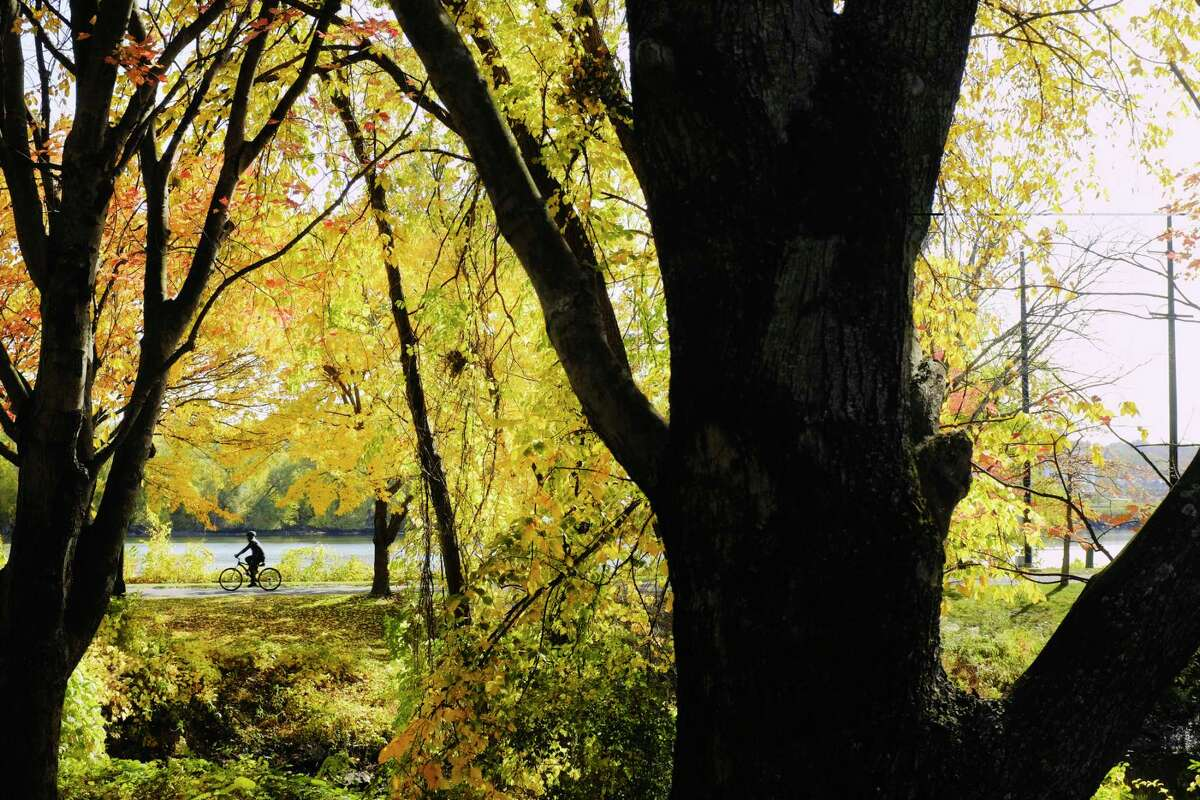 A bicyclist rides along the path through the Corning Preserve on Thursday, Oct. 22, 2020, in Albany, N.Y. (Paul Buckowski/Times Union)