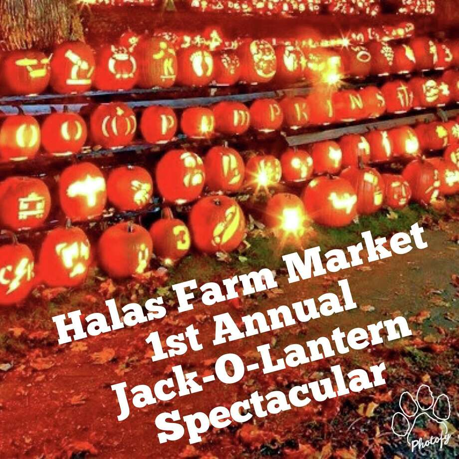 Halas Farm in Danbury is collecting carved pumpkins from the community with the goal of beating the world record of 30,851 lit jack-o'-lanterns displayed at once. Photo: / Contributed Photo /Halas Farm