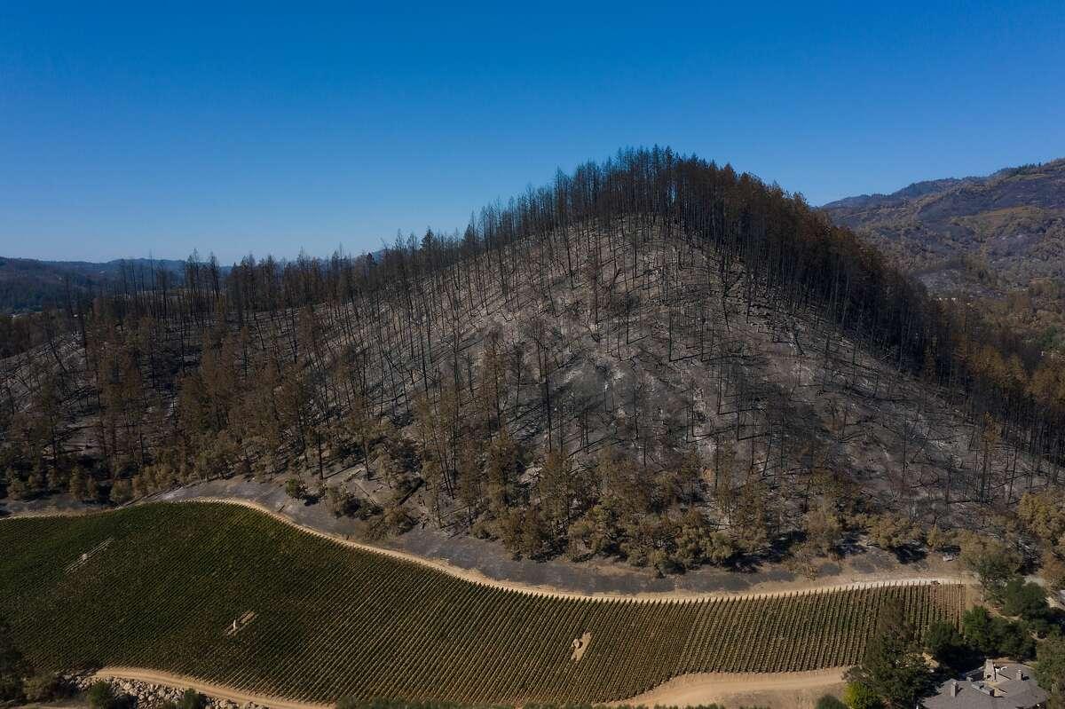 A burned hill is seen on Thursday in Angwin. As the calamitous wildfire season continues, PG&E is tentatively planning to turn off power for customers across a wide swathe of its service territory Sunday to Tuesday.