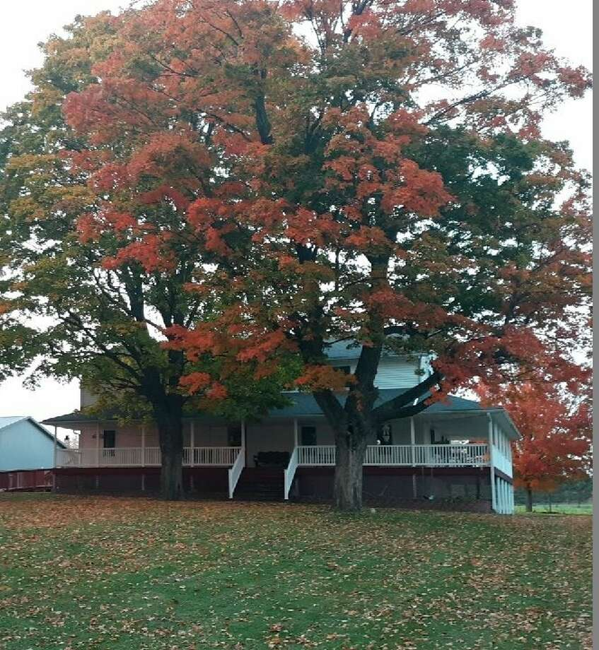 Fall colors are showing at the Eicher home, pictured, as leaves begin to fall. (Courtesy photo)