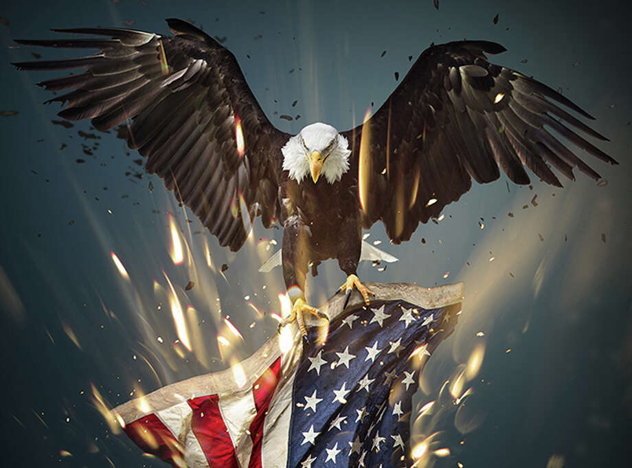 Flying North American Bald Eagle with American flag. Photo: Kesu01/Getty Images/iStockphoto