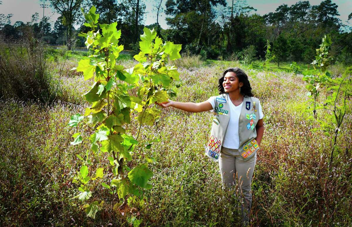 Halle Hudson planted sycamore trees along Cypress Creek as her Girl Scout Gold Award project in 2017.