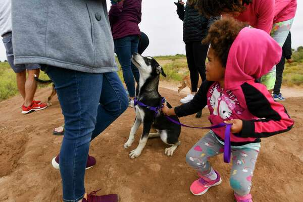 Grand Companions hosted a homeless pet hike Friday, Oct. 23, 2020 in partnership with Sibley Nature Center. Emri King gets ready to continue walking with Jiggs on the Sibley Nature Center trail. Jacy Lewis/Reporter-Telegram