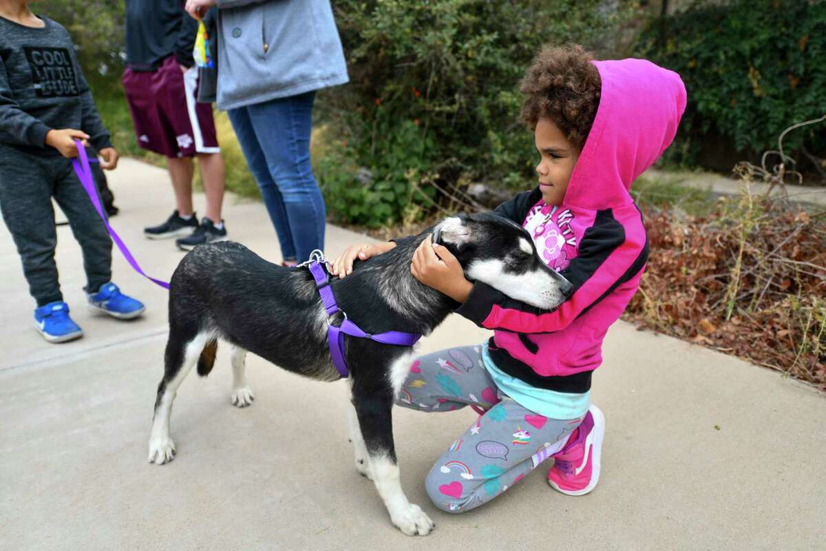 Grand Companions hosted a homeless pet hike Friday, Oct. 23, 2020 in partnership with Sibley Nature Center. Emri King, 6, pets Jiggs before the hike at Sibley Nature Center. Jacy Lewis/Reporter-Telegram