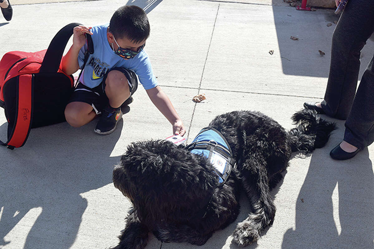 Alex Flores pets CoJack on Thursday during after-school pick-up.