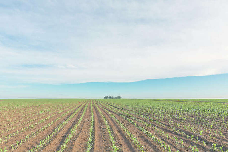 The Saving Tomorrow's Agriculture Resources initiative shows farmers how to prevent runoff, protect water supplies and promote soil health. Photo: Getty Images