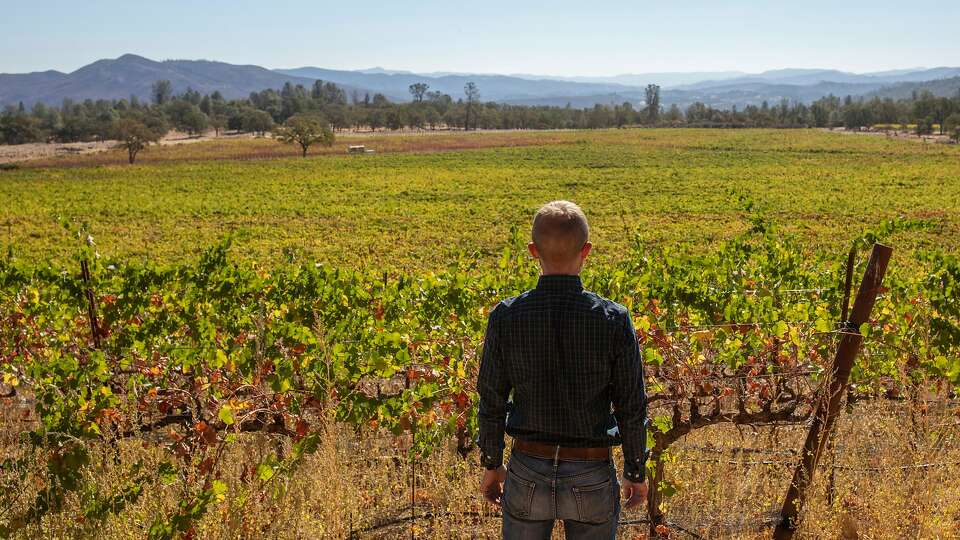 Wine Country, fire country: A new reality in North Bay