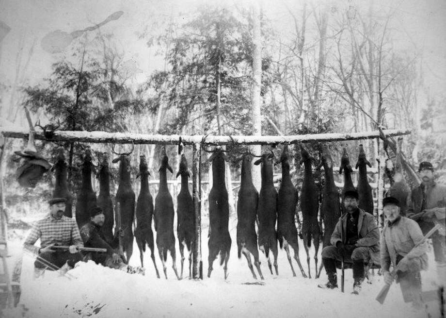 Successful deer hunters in Manistee County in early 1900s are shown by a deer hunting camp buck pole. (File photo)