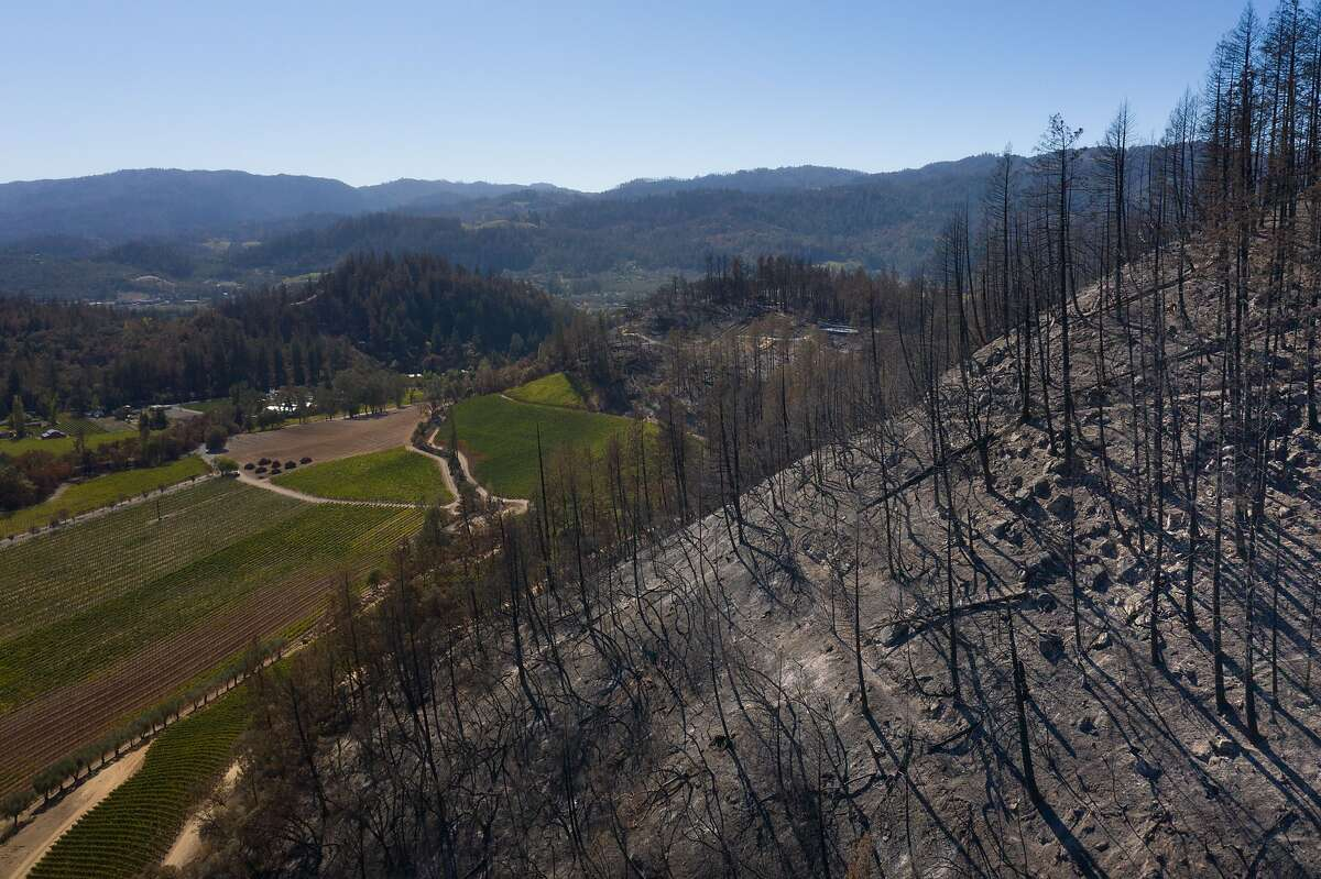 A burned hill in Angwin is seen on Thursday. Residents of some Bay Area hillside suburbs are being encouraged to leave ahead of high fire danger Sunday night.