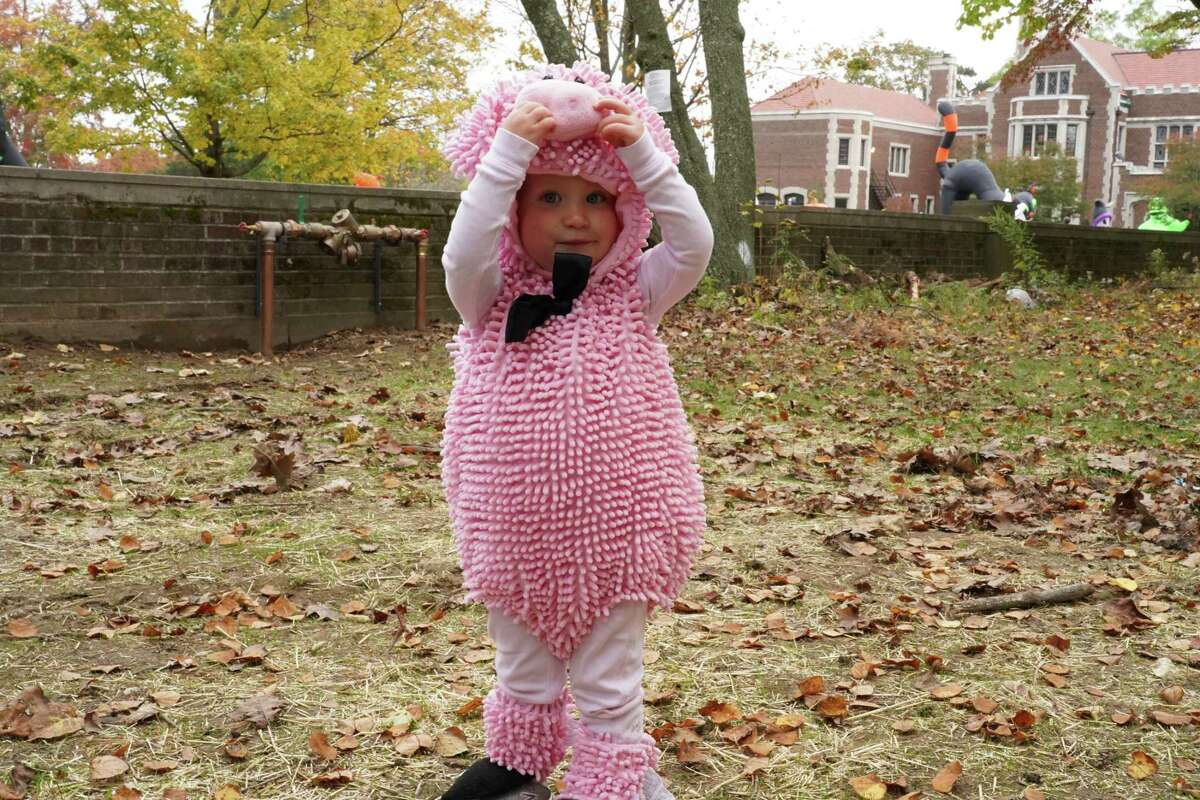 Emma Jean Smith, nearly two, dressed as a piggy and said oink during the New Canaan Recreation Department's