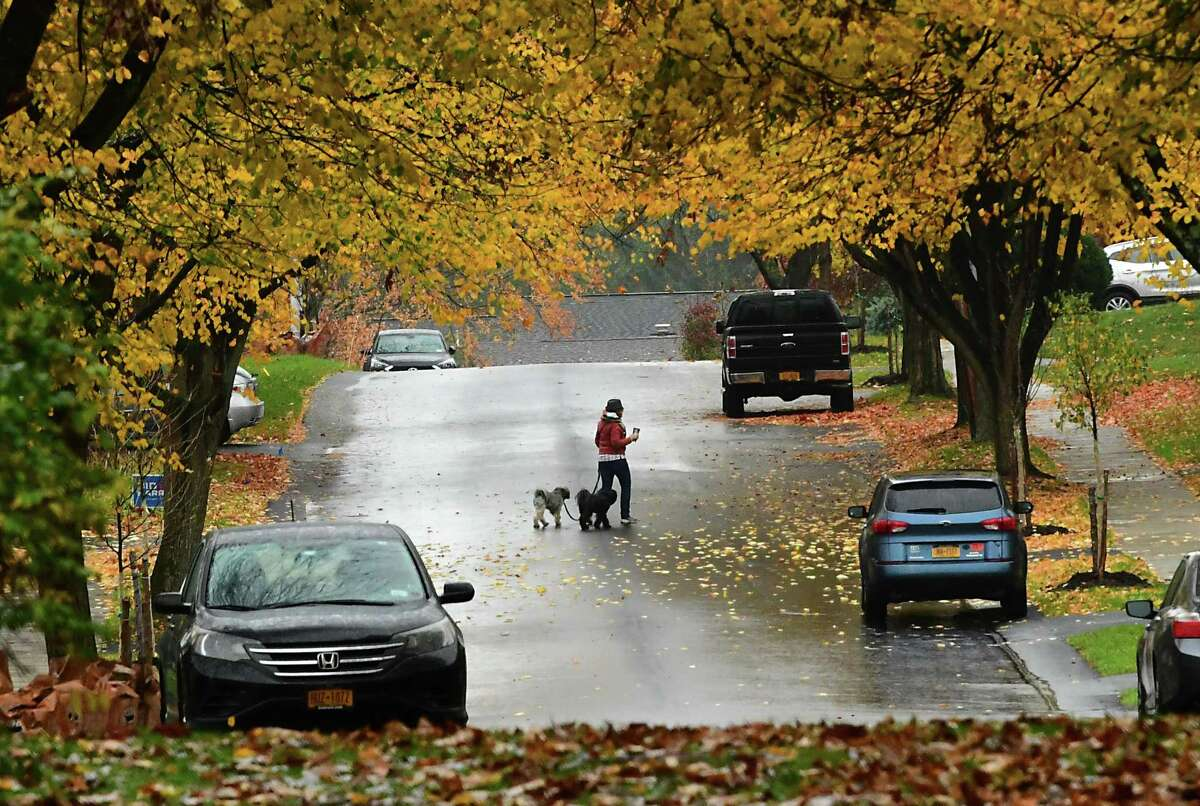 A pedestrian is seen walking a couple dogson Milner Ave.during a light rain on Monday, Oct. 26, 2020 in Albany, N.Y. (Lori Van Buren/Times Union)