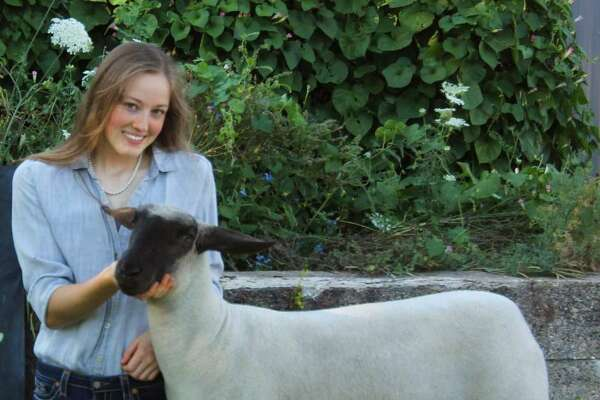 The 2020 Manistee 4-H Livestock Showcase was held remotely in August due to the pandemic. Mercy Sobkoviak won grand champion honors as a senior in sheep, goat and swine showmanship during the virtual showcase.