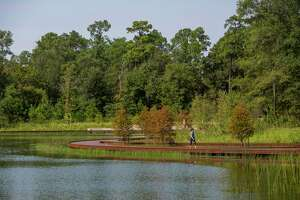 A woman walks at Hines Lake and the new Eastern Glades at Memorial Park on September 11, 2020 in Houston.