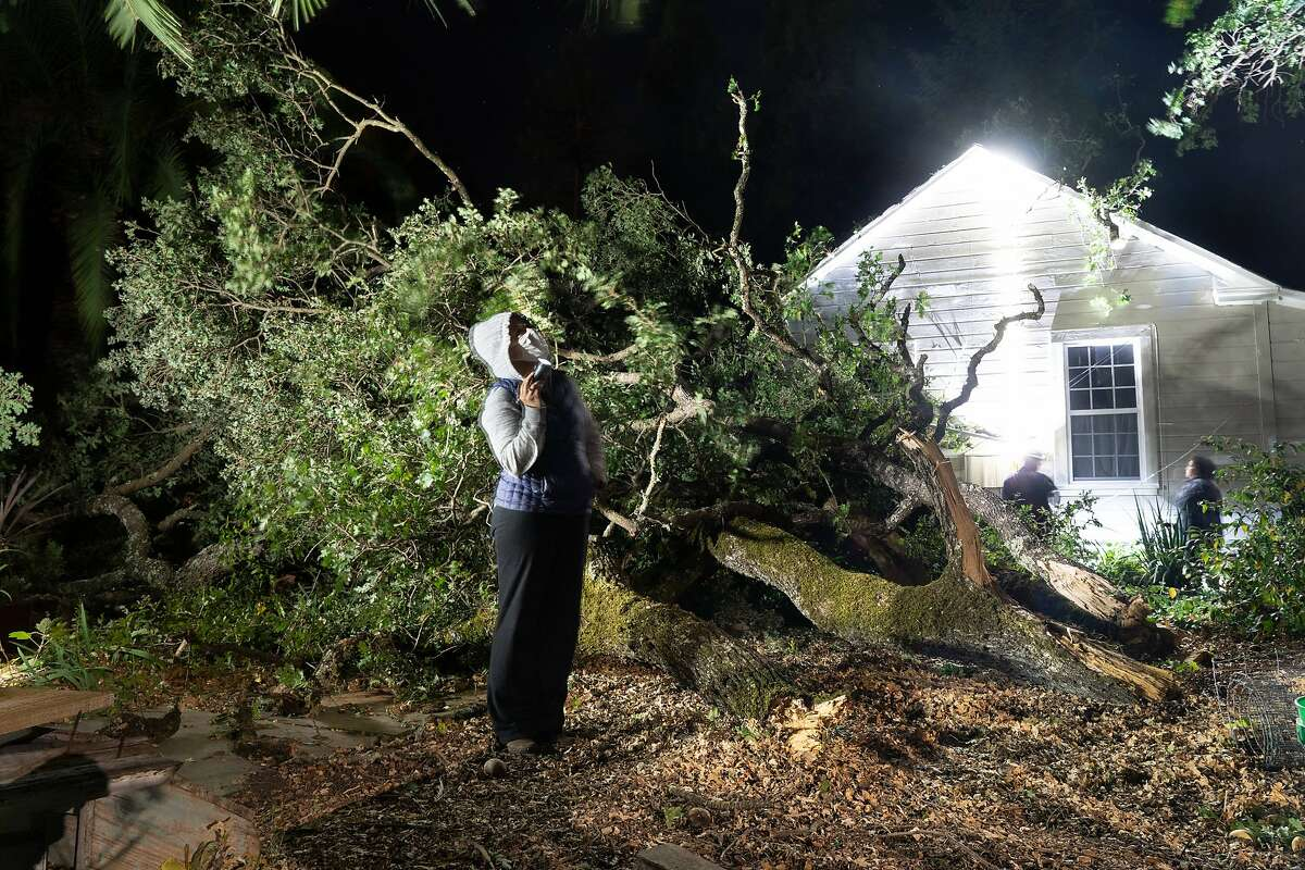 Maggie Beams looks at her mother Bonnie Brown's oak tree next to wind blown branches that fell in Sonoma on Monday, Oct. 26, 2020 in Sonoma, Calif. Brown is showing the electrical service box to a PG&E worker who is turning off power the the fallen wires.