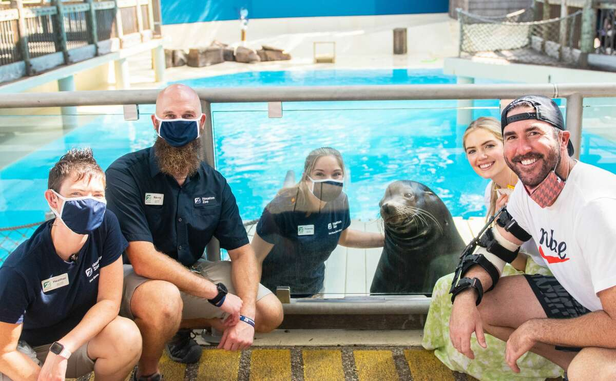 Justin Verlander and Kate Upton visit the sea lions.