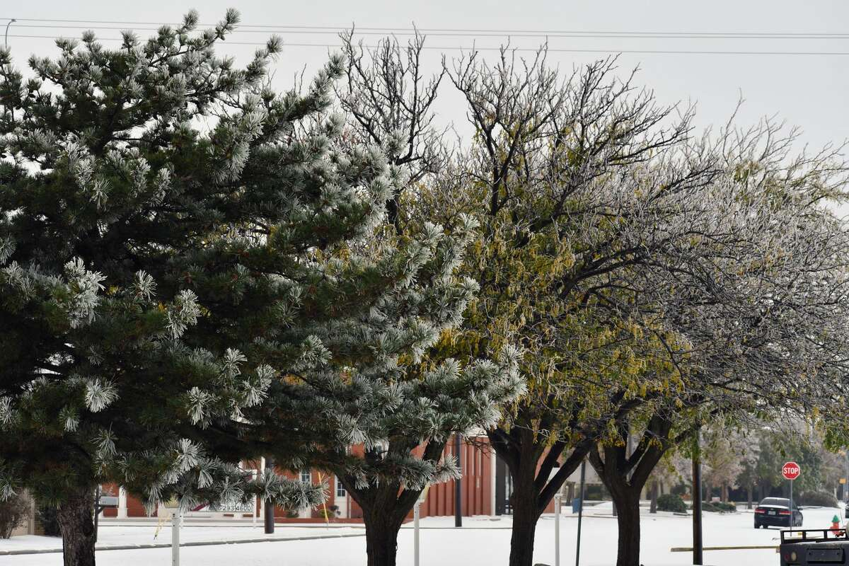 Plainview received almost an inch of snow overnight on Tuesday.