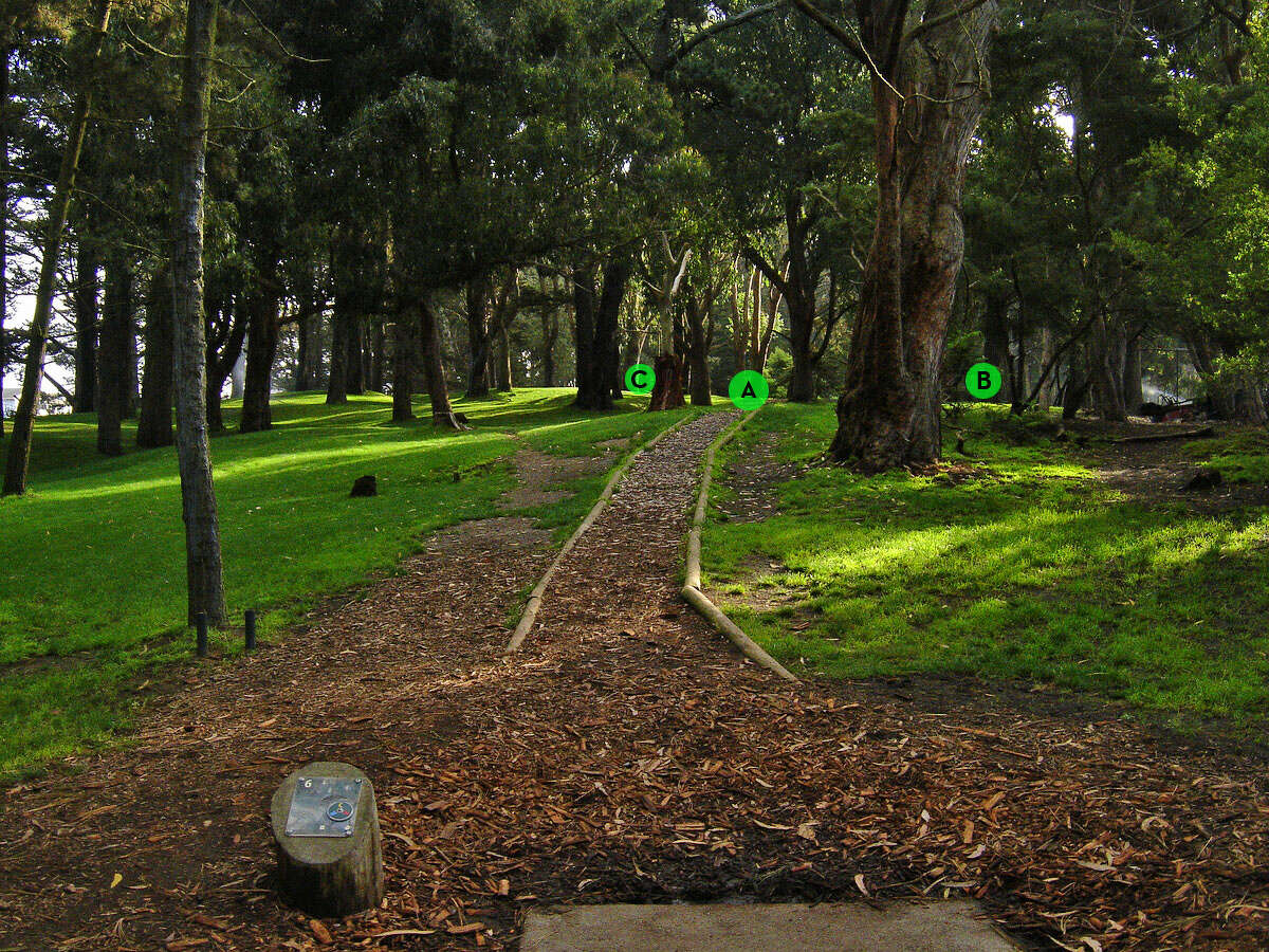 Hole No. 6 at Golden Gate Park Disc Golf Course.