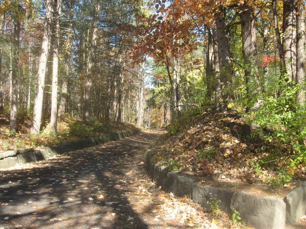 Nature's wonderland at Five Rivers Conservation Center - photo taken 10/21/20. A treasure so near by and yet missed by so many. Walk these nature trails and let your spirit be renewed.