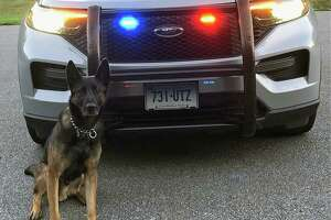 Connecticut State Police K9 Bowser is expected to get a bullet and stab protective vest in the next eight to 10 weeks.