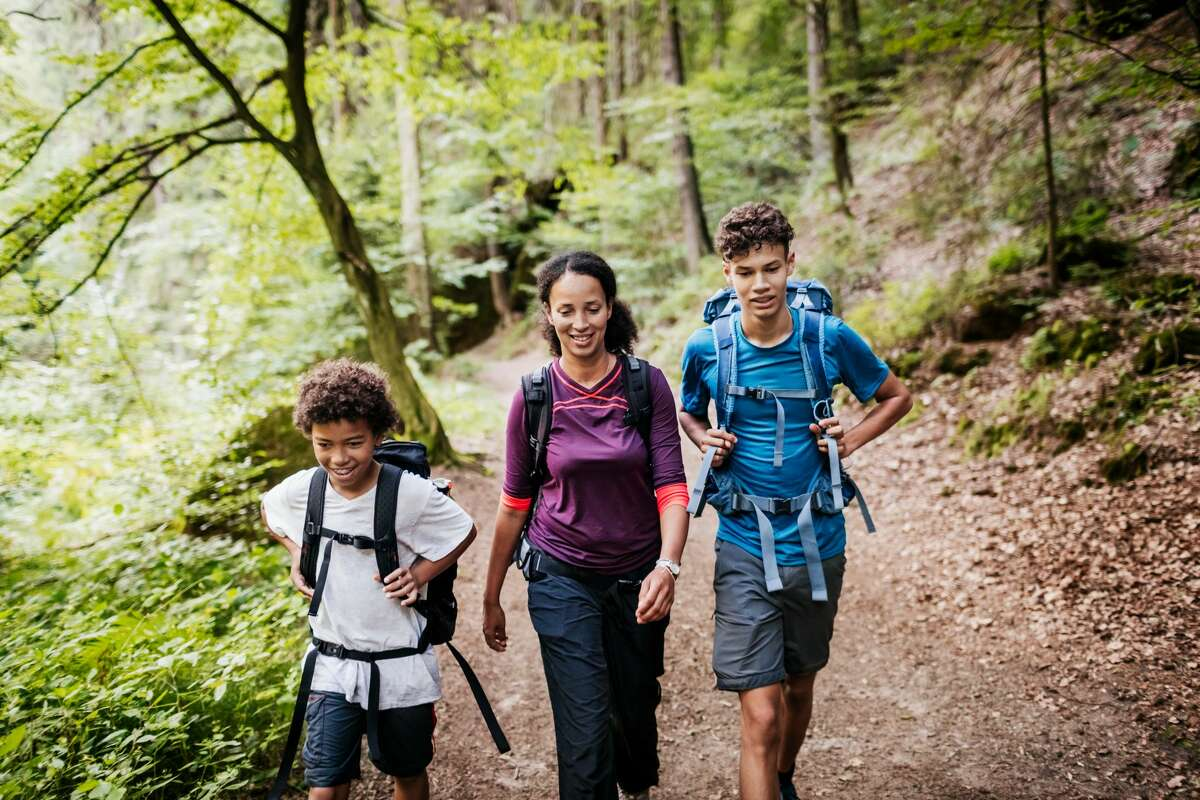 A family of three out hiking and navigating a woodland trail together.