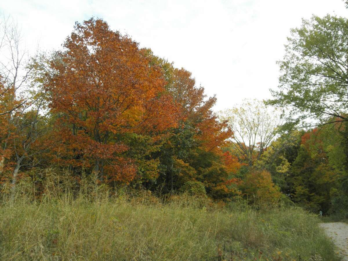 Fall colors were bright along M-22 on Oct. 13.