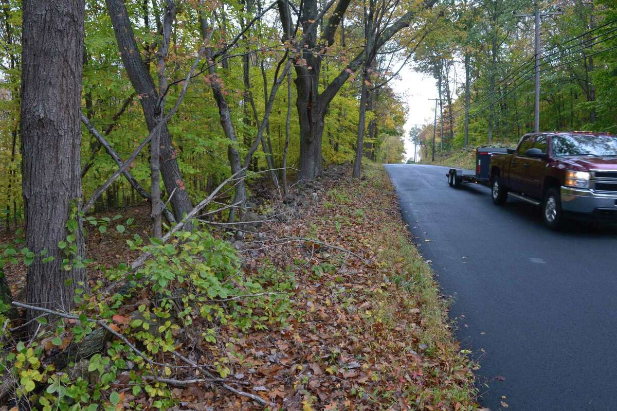 Newtown is negotiating to buy 20 acres on Boggs Hill Road to preserve as open space. Wednesday, October 21, 2020, in Newtown, Conn.