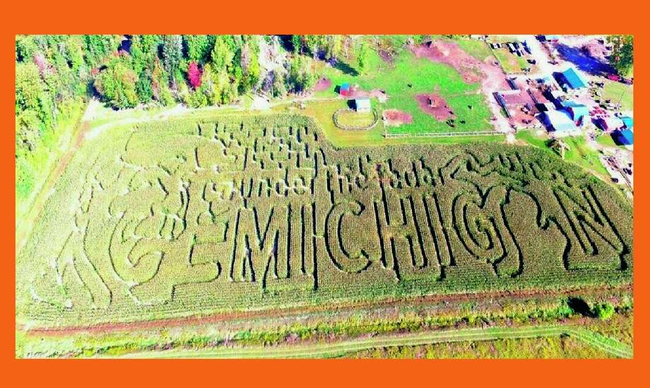 The 2020 corn maze features the TV show Under the Radar. (Photo Provided)