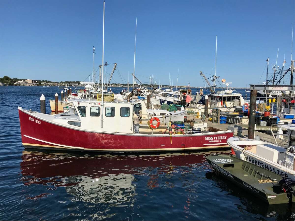 Miss Lilly at Provincetown Harbor, Massachusetts.  Submitted by Mike Novack