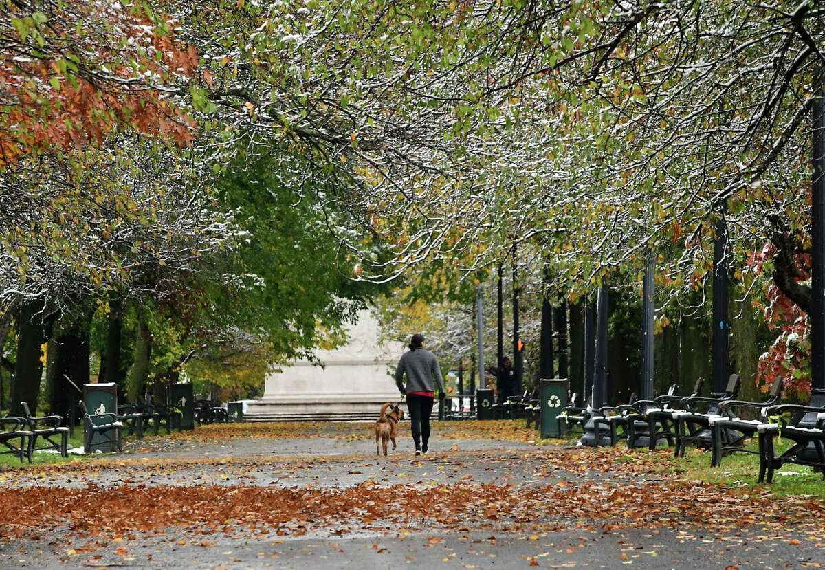 A pedestrian is seen walking a dog in Washington Park after the Capital Region received its first snow fall of the season on Friday, Oct. 30, 2020 in Albany, N.Y. (Lori Van Buren/Times Union)