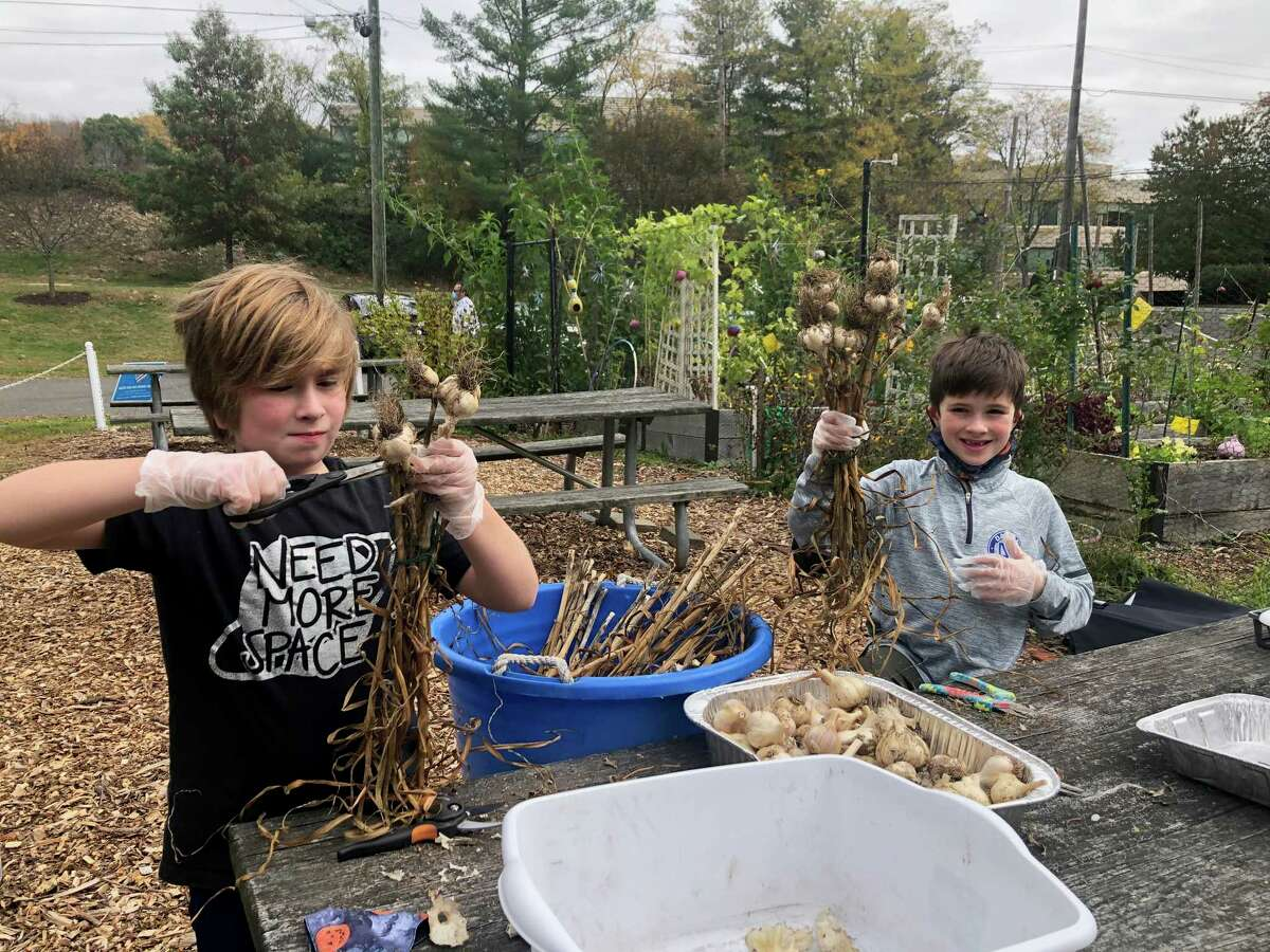 Finn and Barrett Leonard take part in the Wilton Garden Club's Green Teens program. The club won the Luckner Youth Award, for outstanding work with youth in programs from the Federated Garden Clubs of Connecticut.