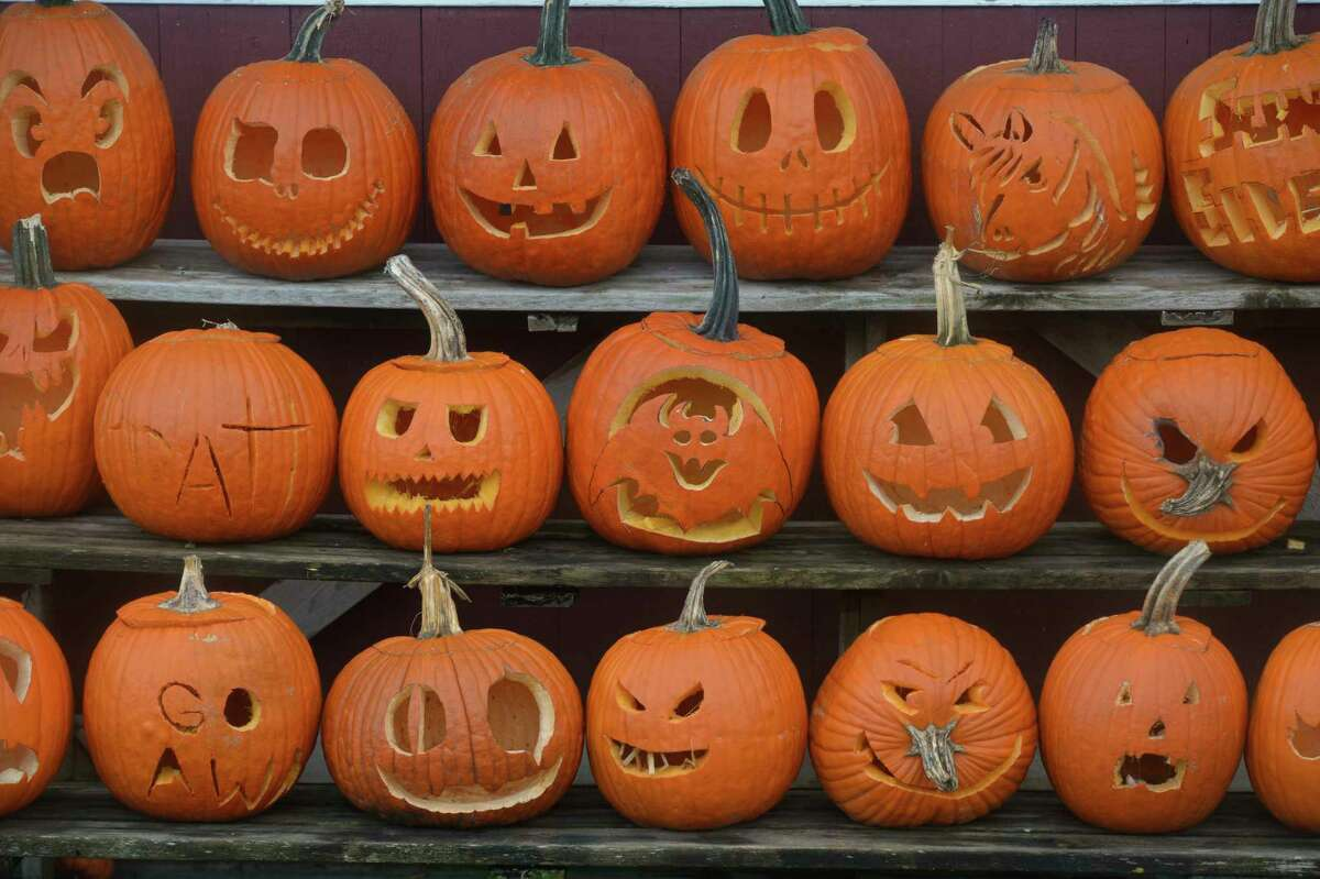 Halas Farm is looking to beat the Guinness World Record for the most carved pumpkins. People have been dropping them off and the farm is putting them on display for drive-by viewing. Friday, October 30, 2020, in Danbury, Conn.