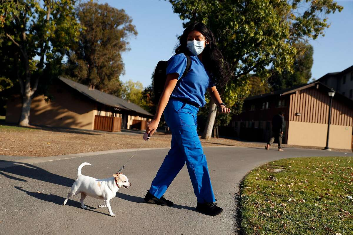 Gianna Nino-Tapias takes her therapy dog, Roxy, on long walks as she traverses the Stanford campus between classes.